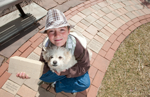 Child, Dog, and Bricks